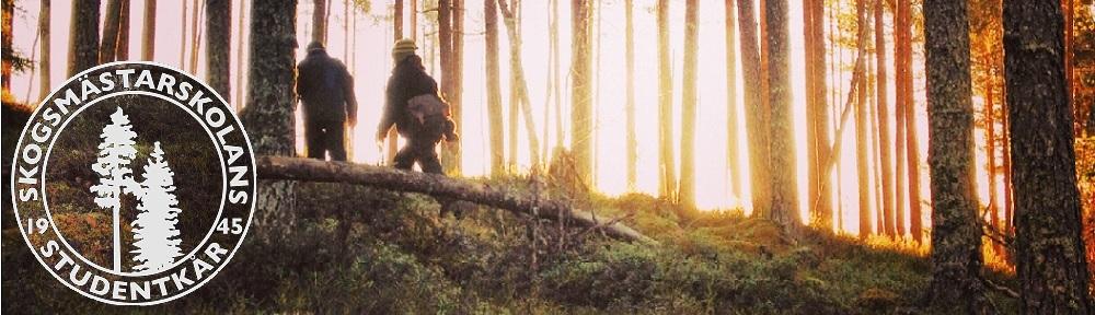 Skogsmästarskolans Studentkår